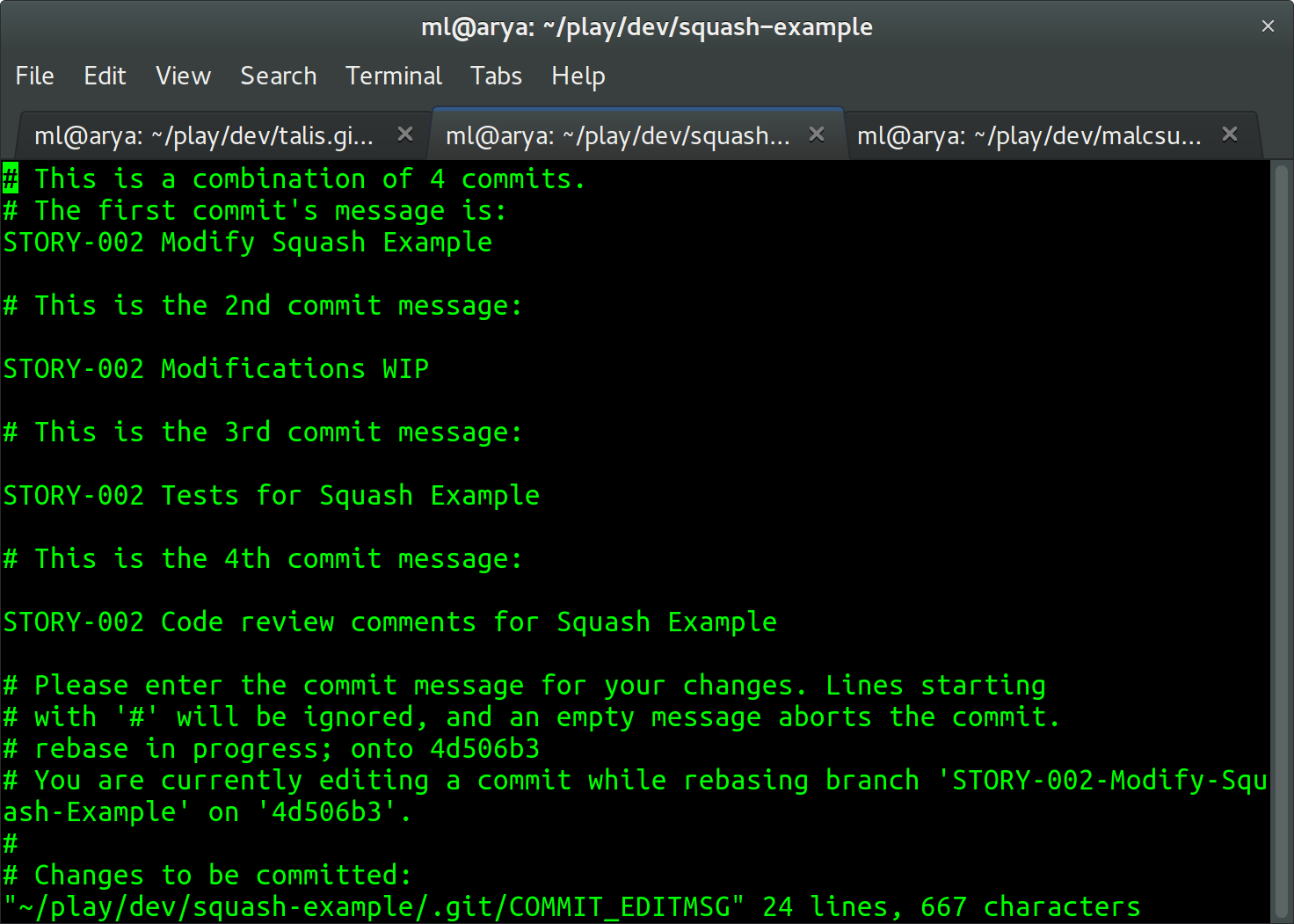 Screenshot of the author viewing multiple commit messages